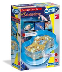 Galileo Salzkrebse