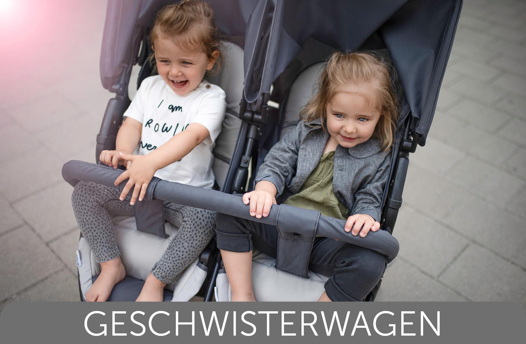 Hauck Geschwesterwagen